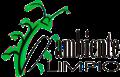 Ambilimpio Logo